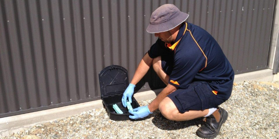 Pest and Rodent Control